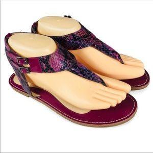 Via Spiga Purple Fusia Leather Snake Print Sandals